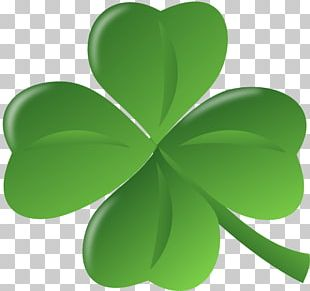 Saint Patrick's Day March 17 Irish People Shamrock PNG