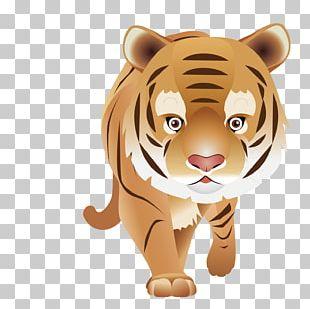 T-shirt Bengal Tiger Animal Clothing English PNG
