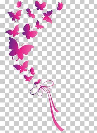 Butterfly Euclidean PNG
