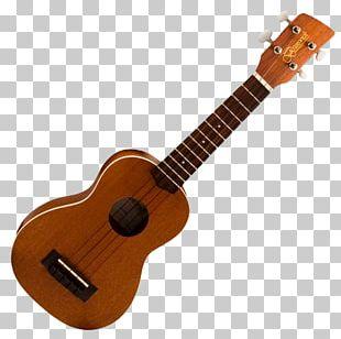 Melokia Soprano Ukulele Musical Instruments String Instruments Guitar PNG