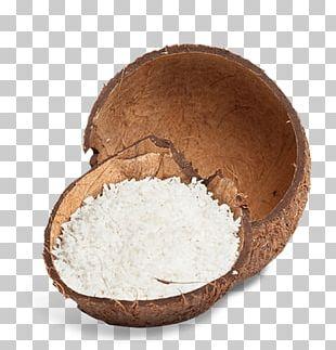 Coconut Water Coconut Milk Powder Fruit PNG