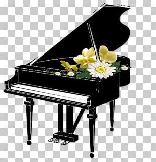 Piano Keyboard PNG