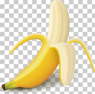 Banana Fruit Icon PNG