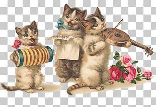 Greeting & Note Cards Cat Birthday Kitten Wedding Invitation PNG