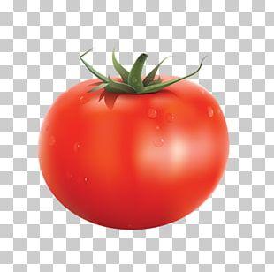 Organic Food Vegetable Tomato Juice PNG