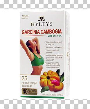 Green Tea Garcinia Cambogia Green Coffee Tea Bag PNG