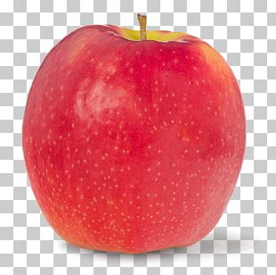McIntosh Red Apple Juice Cripps Pink Accessory Fruit PNG