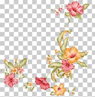 Flower Stock Photography Stock Illustration PNG
