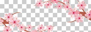 Cherry Blossom Banner PNG