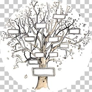 Family Tree Genealogy Template Ancestor PNG
