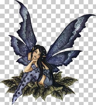 Fairy Pixie Legendary Creature Drawing Flower Fairies PNG