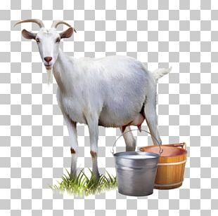 Goat Milk Goat Milk Automatic Milking PNG
