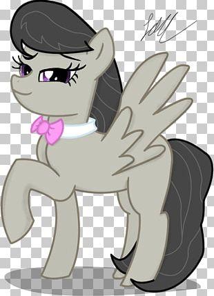 Pony Horse Cat Mammal Illustration PNG