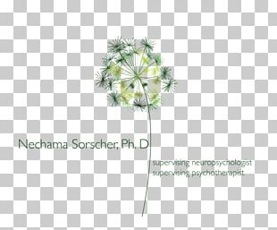 Cut Flowers Floral Design Artificial Flower Plant Stem PNG