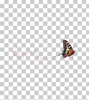 Butterfly Flower Pattern PNG
