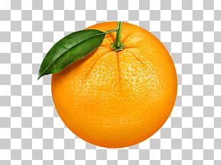 Clementine Mandarin Orange Fruit PNG