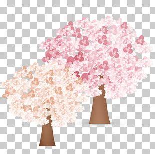 National Cherry Blossom Festival Cartoon PNG