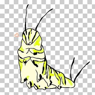 Line Art Insect Cartoon PNG