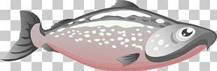 Chinook Salmon Pink Salmon Sockeye Salmon PNG