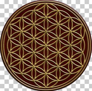 Sacred Geometry Golden Ratio Overlapping Circles Grid Symbol PNG