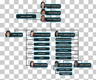 Cagayan State University University Center California State University Organizational Chart PNG