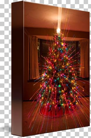 Christmas Tree Christmas Ornament Christmas Lights PNG