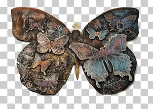 Butterfly Insect Pollinator Invertebrate 2M PNG