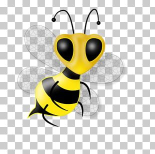 Honey Bee Insect Drawing PNG