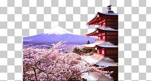 Yamanashi Kinkaku-ji Matsumoto Tokyo Arakurayama Sengen Park PNG