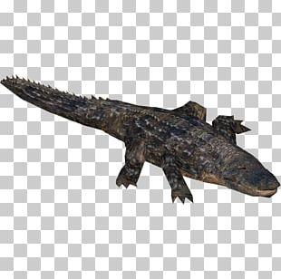 Zoo Tycoon 2 Far Cry 5 American Alligator Nile Crocodile Crocodiles PNG