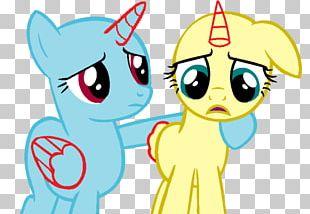 Pony Rainbow Dash Fluttershy Slide Show PNG