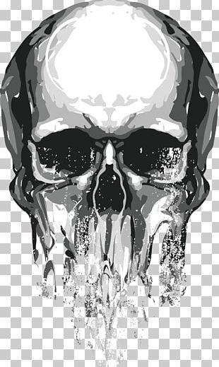 Skull Euclidean PNG