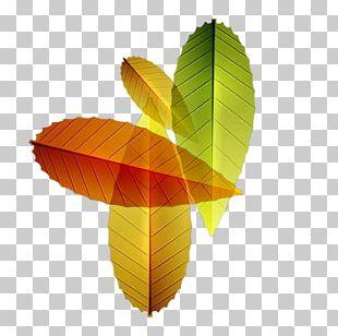 Leaf El Otoo Autumn PNG
