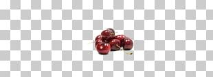 Earring Cranberry Body Piercing Jewellery Human Body PNG