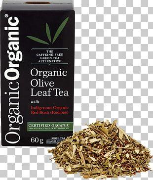 Nilgiri Tea Hōjicha Olive Leaf PNG