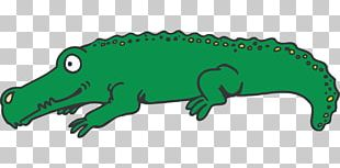 Alligator Eyes Crocodiles PNG