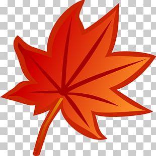 Leaf Euclidean PNG