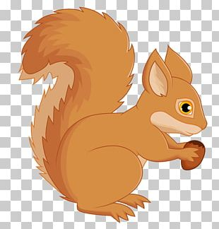 Tree Squirrels Computer Mouse PNG