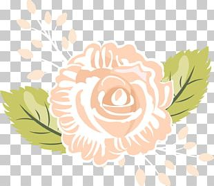 Rose Family Floral Design PNG