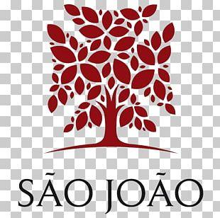 Saint John Hospital Physician Hospital De São João Medicine PNG