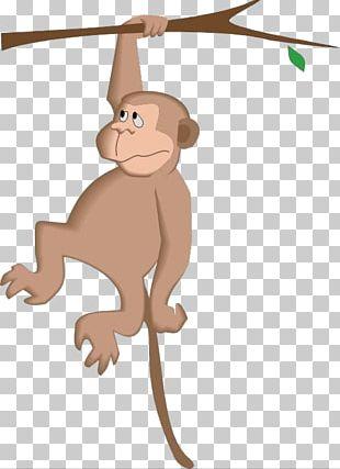 Monkey Cartoon Tree PNG