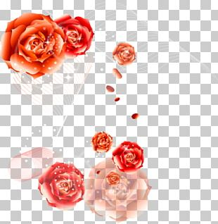 Garden Roses Happy Birthday To You Flower Bouquet PNG