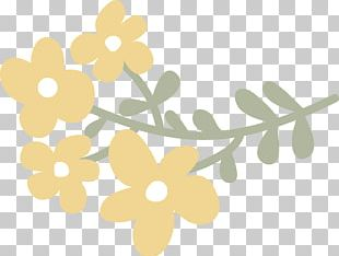 Drawing Flower Laurel Wreath Crown PNG