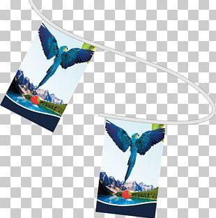 Bunting Paper Flag Printing Textile PNG