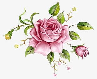 Pink Flowers Background Decoration 2 PNG