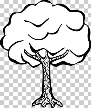 Drawing Line Art Tree PNG