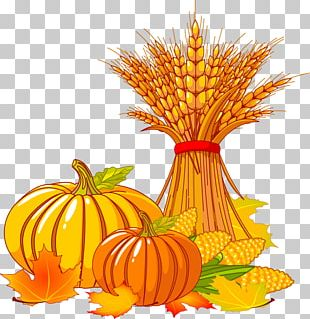 Thanksgiving Autumn Turkey PNG