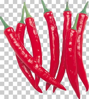 Red Chilli Pepper Row PNG