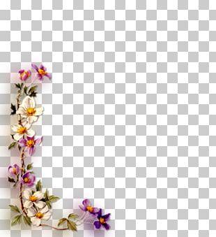 Floral Design Artificial Flower Frames Film Frame PNG