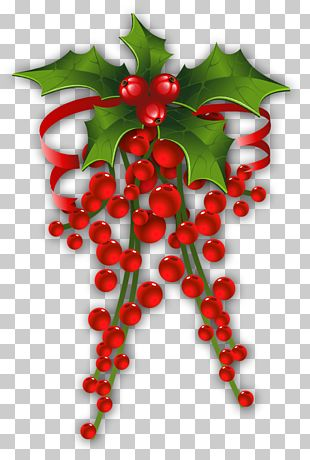 Christmas Decoration Mistletoe PNG